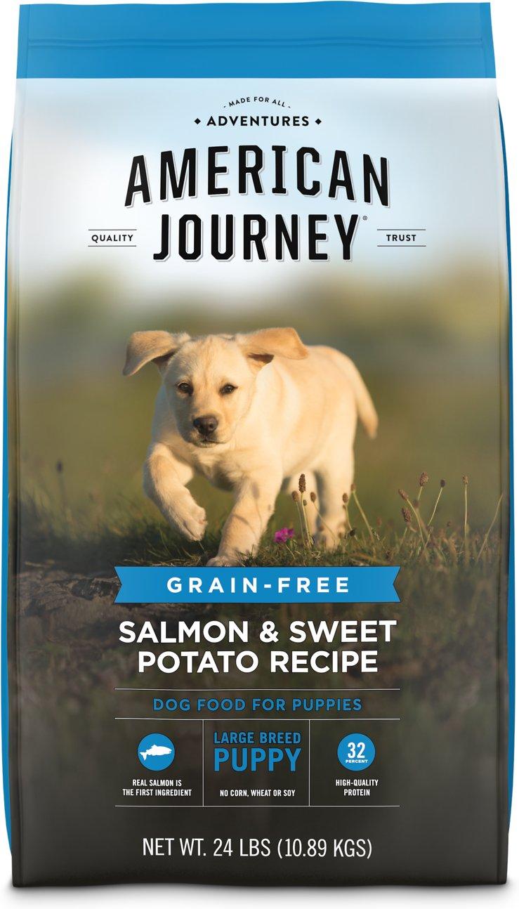 American Journey Salmon & Sweet Potato